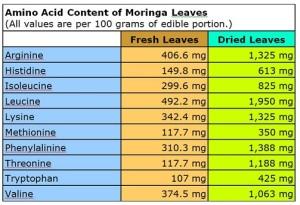 Contenido de aminoacidos